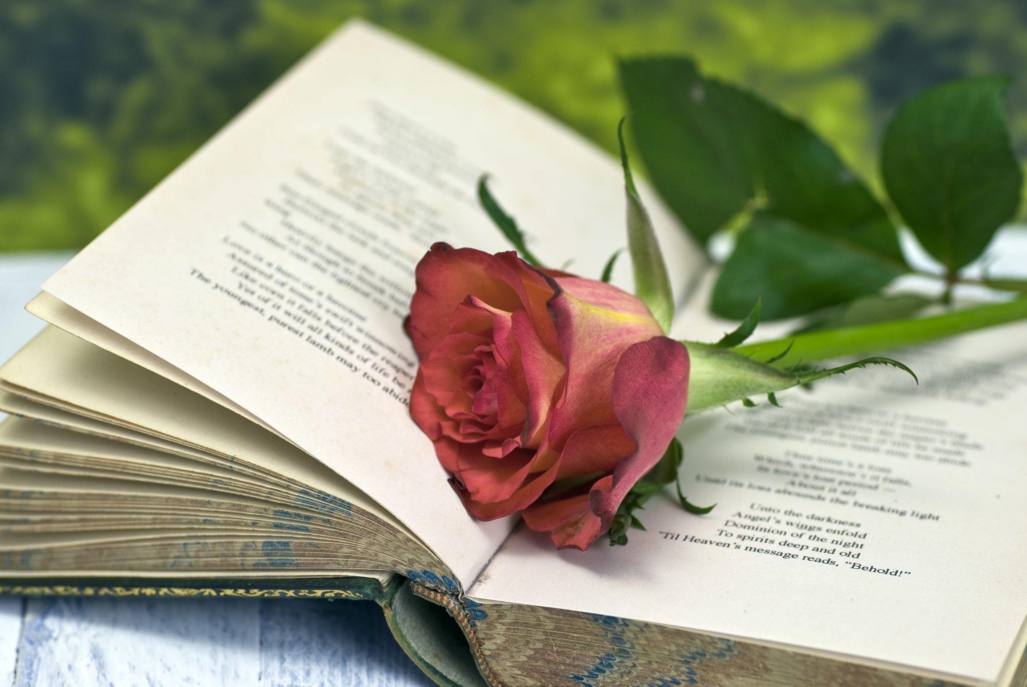 Поздравление писателю с юбилеем в прозе